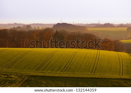Gently rolling landscape of farmland with ploughed fields  copses of trees and shallow valleys shrouded in a fine mist in evening light near Duesseldorf  Germany  Europe