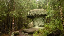 Geological rock formation shaped like stone mushroom. Stolowe Mountains National Park, Lower Silesia, Poland