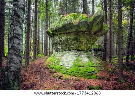 Geological rock formation shaped like stone mushroom. Stolowe Mountains National Park, Lower Silesia, Poland Zdjęcia stock ©