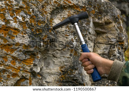 geologist's hand strikes a limestone mossy rock with a geological hammer to take a sample