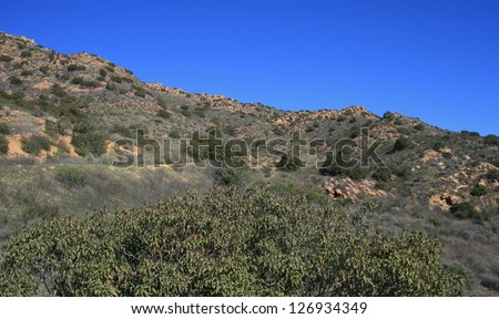 Geology on a hill side, California