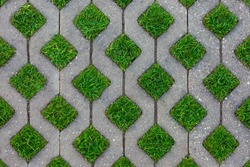 Geometric Concrete Of Parking Whith Green Grass. Grey Concrete Tile With Cells Of Eco Parking  With Hole For Grass, Top View.