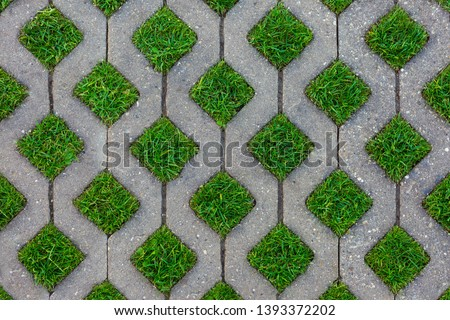 Turf-pavers Images and Stock Photos - Avopix com