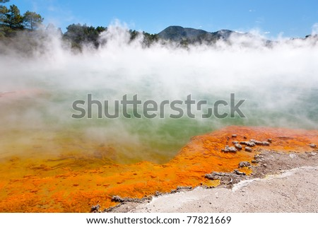 Geothermal pool near  Rotorua, North Island, New Zealand