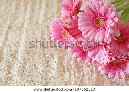 Gerber flowers, birthday card.