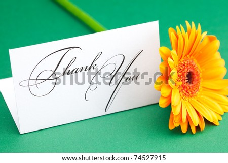 gerbera and card signed thank you on green background - stock photo
