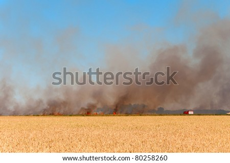 German Firefighter battling a fire, that  quickly raging across a field in the south of Brandenburg.