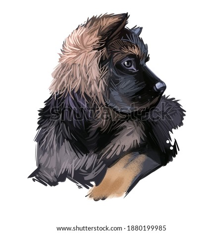 German Shepherd Dog dog breed digital art illustration isolated on white. Popular puppy portrait with text. Cute pet hand drawn portrait. Graphic clip art design Foto stock ©