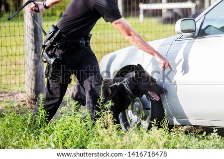 German Shepherd working dog, police K9 unit black shepherd finding drugs narcotics, policeman handler in uniform training canine, searching vehicle #1416718478