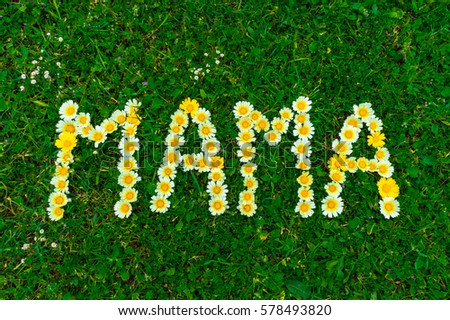 German text Mama (means mom), word with yellow and white daisy flowers in fresh green grass. #578493820