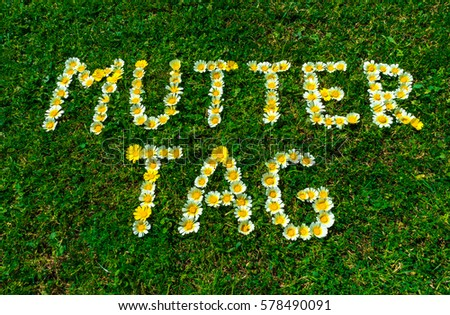 German text Muttertag (means Mother's Day), word with daisy flowers in fresh green grass. #578490091