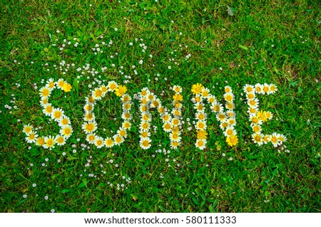 German text word Sonne means sun, written with daisy flowers in green fresh grass background. #580111333