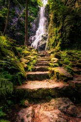 Germany, Black Forest, portrait of a waterfall in nature. An old path with stone stairs leads to a magnetic waterfall in a green covered valley.