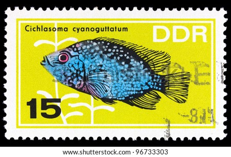 GERMANY-CIRCA 1966: A stamp printed in GERMANY showing fish, circa 1966