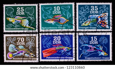 GERMANY - CIRCA 1976: A stamp printed in Germany shows six kind of colorful fish , circa 1976.