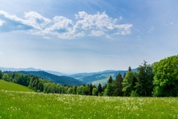 Germany, Endless green nature landscape panorama in black forest holiday region