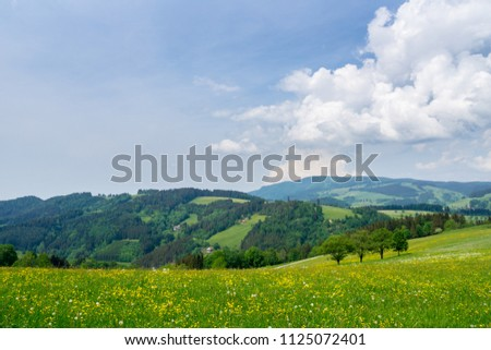 Germany, Endless nature landscape in black forest holiday region