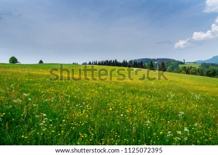 Germany, Recreation and vacation area of black forest near St Peter