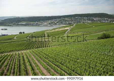 Germany, Rhine river Valley, Unesco World Heritage,europe.