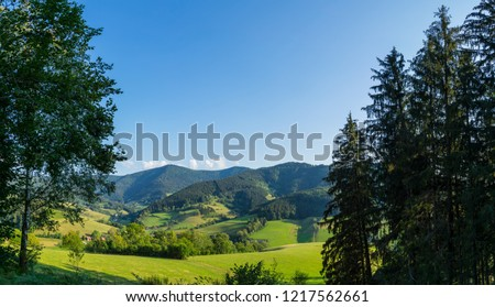 Germany, XXL panorama of endless black forest mountain hiking region #1217562661