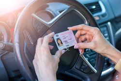 Getting a driver's license, female hands show US driving license, amid the steering wheel of a car