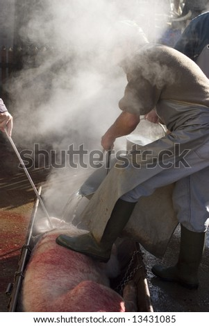 Getting pork meat ready for cutting in pieces and smoking
