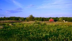 Gettysburg National Park Landscape Shot