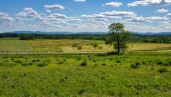 Gettysburg, PA lone tree on the historic battlefields