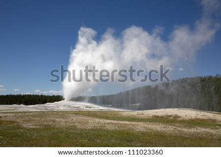 Geyser Old Faithful, in Yellowstone park, USA, erupting water and steam