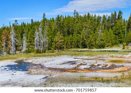 geysers in upper geyser basin ...