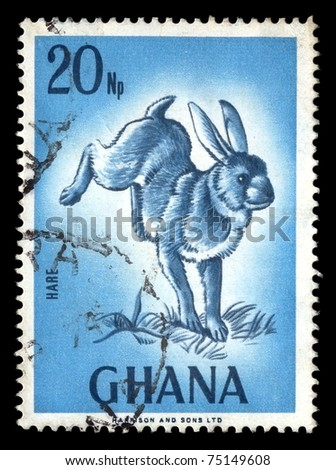 GHANA - CIRCA 1974. Vintage canceled postage stamp with wild rabbit illustration circa 1974. - stock photo