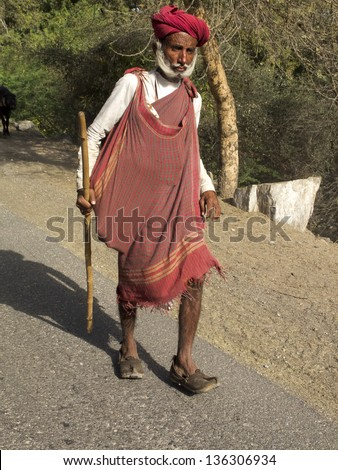GHANERAO,  INDIA - MARCH  11: an old shepherd, wearing a red turban, is walking on a road during the summer transhumance, on March 11, 2013, in Ghanerao, India.
