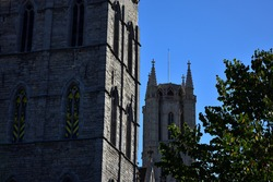 Ghent's cathedral hidding behind ghent's belfry and tree.