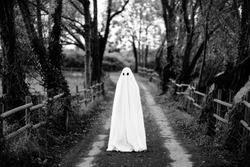 Ghost covered with a white ghost sheet  on a rural path. Grainy textured image to add vintage look.