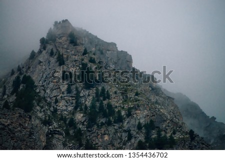Ghostly giant rocks with trees in thick fog. Mysterious huge mountain in mist. Early morning in mountains. Impenetrable fog. Dark atmospheric eerie landscape. Tranquil mystic atmosphere of wilderness. #1354436702