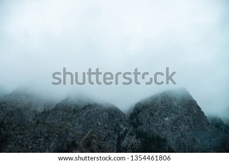 Ghostly giant rocks with trees in thick fog. Mysterious huge mountain in mist. Early morning in mountains. Impenetrable fog. Dark atmospheric eerie landscape. Tranquil mystic atmosphere of wilderness. #1354461806