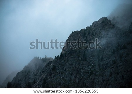 Ghostly giant rocks with trees in thick fog. Mysterious huge mountain in mist. Early morning in mountains. Impenetrable fog. Dark atmospheric eerie landscape. Tranquil mystic atmosphere of wilderness. #1356220553