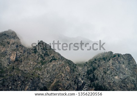 Ghostly giant rocks with trees in thick fog. Mysterious huge mountain in mist. Early morning in mountains. Impenetrable fog. Dark atmospheric eerie landscape. Tranquil mystic atmosphere of wilderness. #1356220556