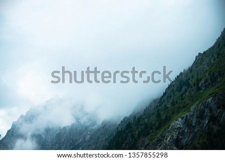 Ghostly giant rocks with trees in thick fog. Mysterious huge mountain in mist. Early morning in mountains. Impenetrable fog. Dark atmospheric eerie landscape. Tranquil mystic atmosphere of wilderness. #1357855298
