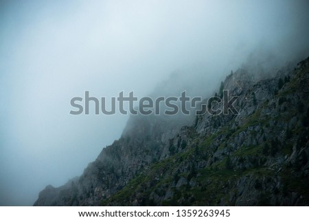 Ghostly giant rocks with trees in thick fog. Mysterious huge mountain in mist. Early morning in mountains. Impenetrable fog. Dark atmospheric eerie landscape. Tranquil mystic atmosphere of wilderness. #1359263945