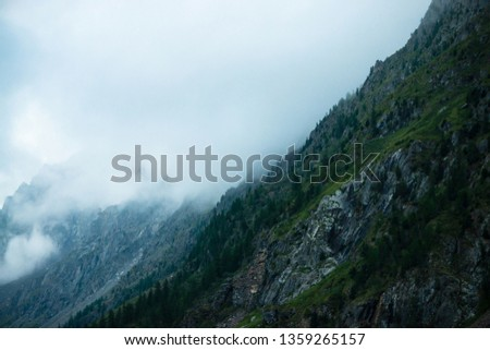 Ghostly giant rocks with trees in thick fog. Mysterious huge mountain in mist. Early morning in mountains. Impenetrable fog. Dark atmospheric eerie landscape. Tranquil mystic atmosphere of wilderness. #1359265157