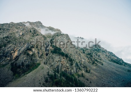 Ghostly giant rocks with trees in thick fog. Mysterious huge mountain in mist. Early morning in mountains. Impenetrable fog. Dark atmospheric eerie landscape. Tranquil mystic atmosphere of wilderness. #1360790222
