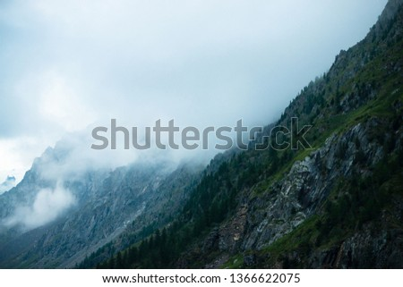 Ghostly giant rocks with trees in thick fog. Mysterious huge mountain in mist. Early morning in mountains. Impenetrable fog. Dark atmospheric eerie landscape. Tranquil mystic atmosphere of wilderness. #1366622075