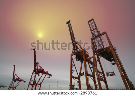 Giant cargo cranes at the shipyard