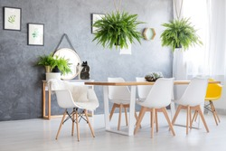 Giant ferns hanging over dining table with a complete set of five modern chairs