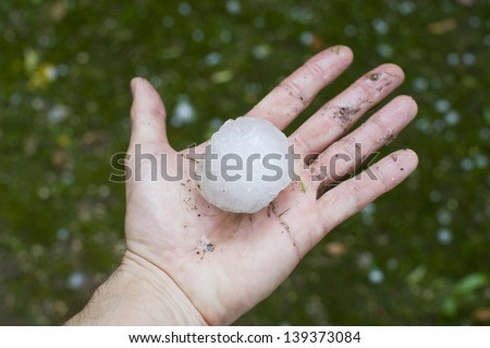 Giant hailstone measuring 5.5cm across. These fell in Verona, Italy, in May 2013.
