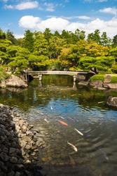 Giant Koi carp Japanese fish pond lake water pool. Golden orange black gold white school of underwater fish. Kenrokuen, zen garden with bridge, Japan.