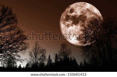 giant red moon rise over dark northern forest