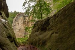 Giant stones and rocks are covered with moss among the beech forest. Polyanytskyi Regional Landscape Park, Dobusha Rocks, Carpathians, Ukraine. Sandstone rocks among the beech forest in summer time.