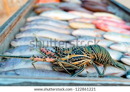 Giant Tiger Prawns, white and red snapper at a fish market